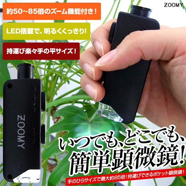 スリー・アールシステム ポケット顕微鏡 3R-ZOOMY04 (sb) 【送料無料】