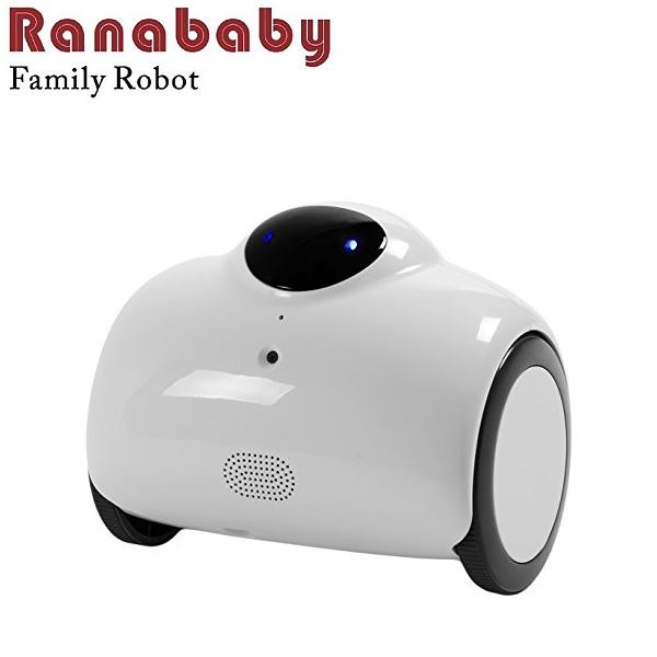 KEIAN 恵安 自走式ネットワークカメラロボット スピーカー&マイク内蔵 RB01-W (sb)【送料無料】