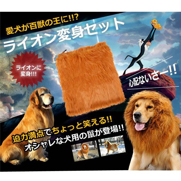 犬用 ライオン変身グッズ ネックウォーマー (sb)